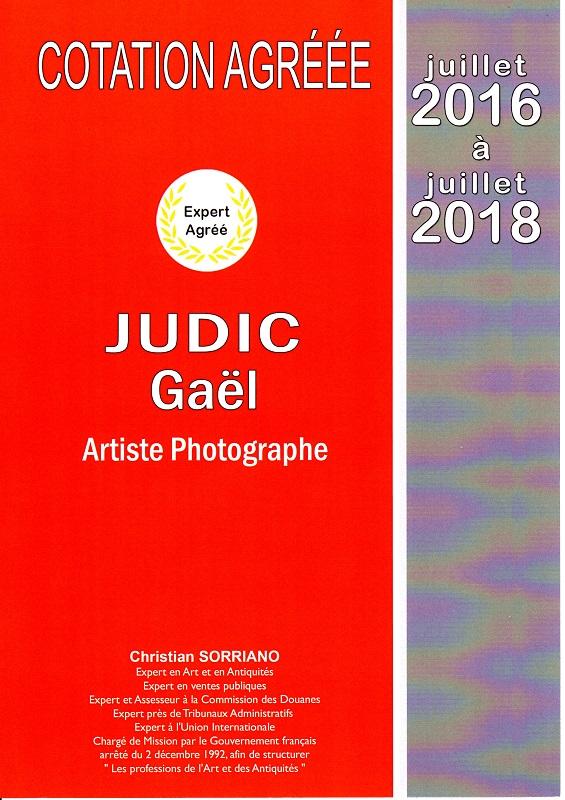 COTATION ARTISTE GAEL JUDIC