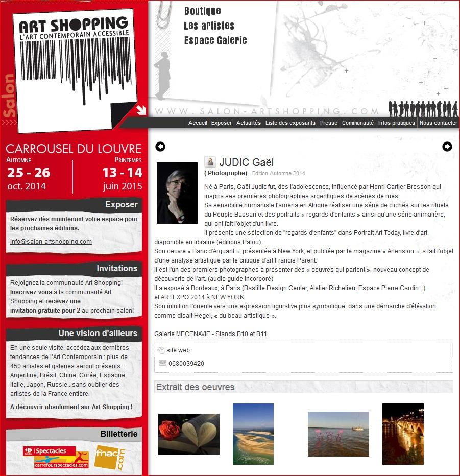 ART SHOPPING 2014